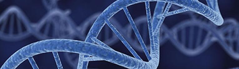 Regenerative Medicine Miami Services GenLife