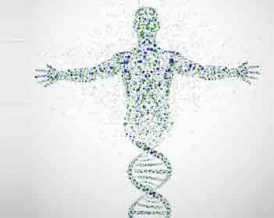 Genetic Markers Testing Miami Regenerative Medicine GenLife