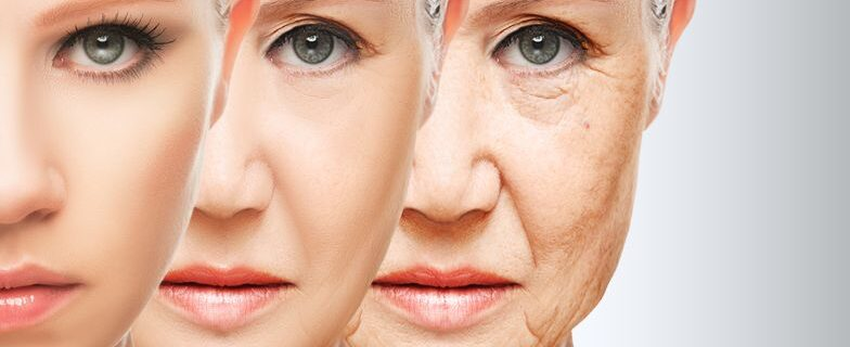 How does Anti Aging Medicine Works
