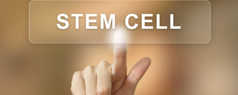 stem cell therapy Miami